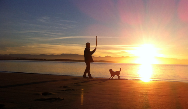DOG WALKERS' PARADISE: One man and his dog take a sunset stroll along Tahunanui Beach.