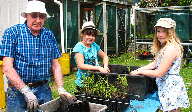 PRIMARY CAREGIVERS: Verran Primary pupils Stevie Johnson-Roberts, centre, and Liby Irwing get a helping hand raising seedlings from Trees For Survival volunteer Andrew Fraser.