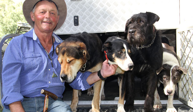 Kaiwera farmer John Chittock with his dogs