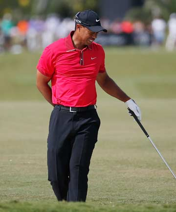 NO MASTER: Tiger Woods will miss the Masters at Augusta after having surgery on his troublesome back.