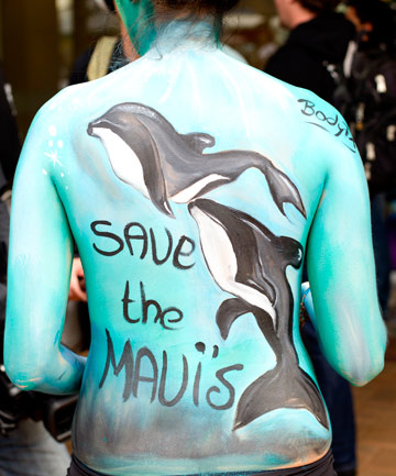 BODY APPEAL: A Wellington march to parliament in 2012 aimed to raise awareness of Maui's dolphin numbers, which is one of the major issues being raised at a hearing into seabed mining in Hamilton this week.