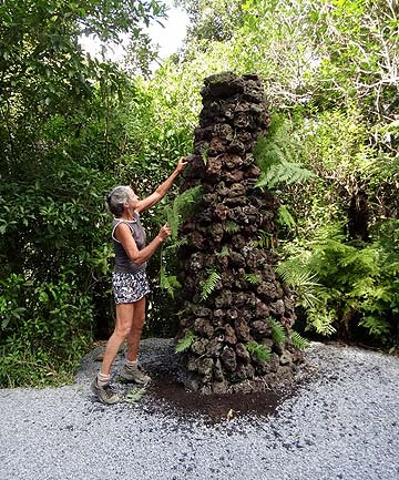 TE ARAROA CAIRN: Volunteer Judy Begg places fern leaves on the  reconstructed cairn.