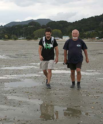 DEATH BEDS: Researcher Dyllan Cochrane, left, and Dr Roger Grace check the Whangateau cockle beds.