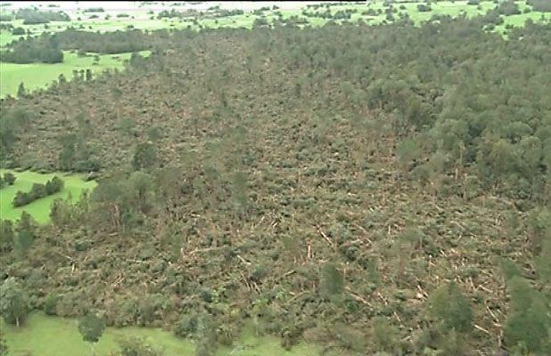 Storm damage near Whataroa, South Westland