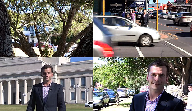 ACTING JOB: David Seymour's no frills election campaign ad for the Epsom electorate has people questioning whether or not it's parody.