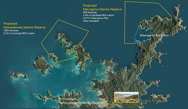 MARINE PROPOSAL: Two areas in the Bay of Islands have been identified as possible no-take marine reserves.