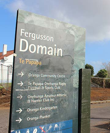 Fergusson Domain