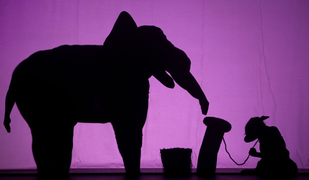 PRECISION REQUIRED: The extraordinary Shadowland performers, who create a dizzying array of images from their bodies.