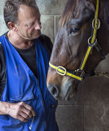 DIVINE INTERVENTION: Geoff Dunn practises the ancient art of dowsing to communicate with his horses to help keep them in top shape.