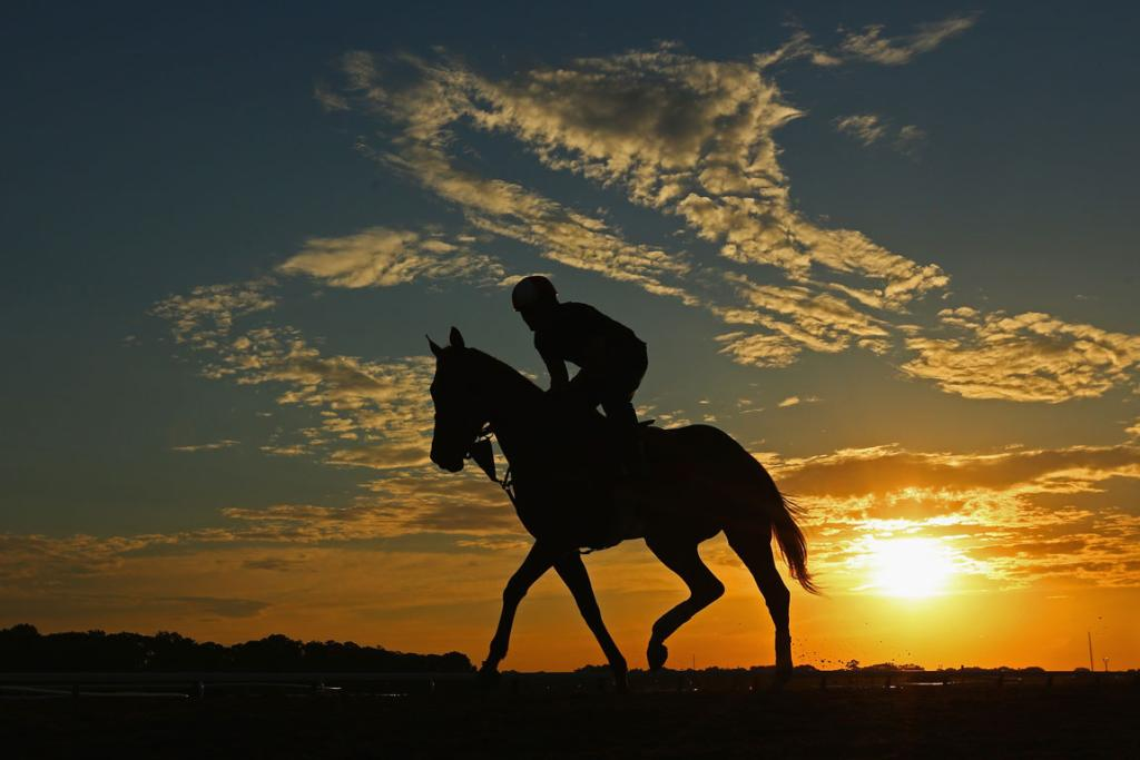 A horse and exercise rider train during sunrise at Belmont Park in New Yrk.