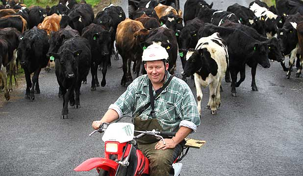 GETTING READY: Gray Baldwin is looking forward to his son Joel and his family and cows arriving on his farm tomorrow.