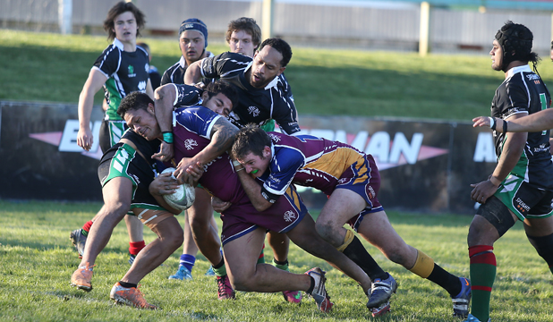 timaru rugby town v country