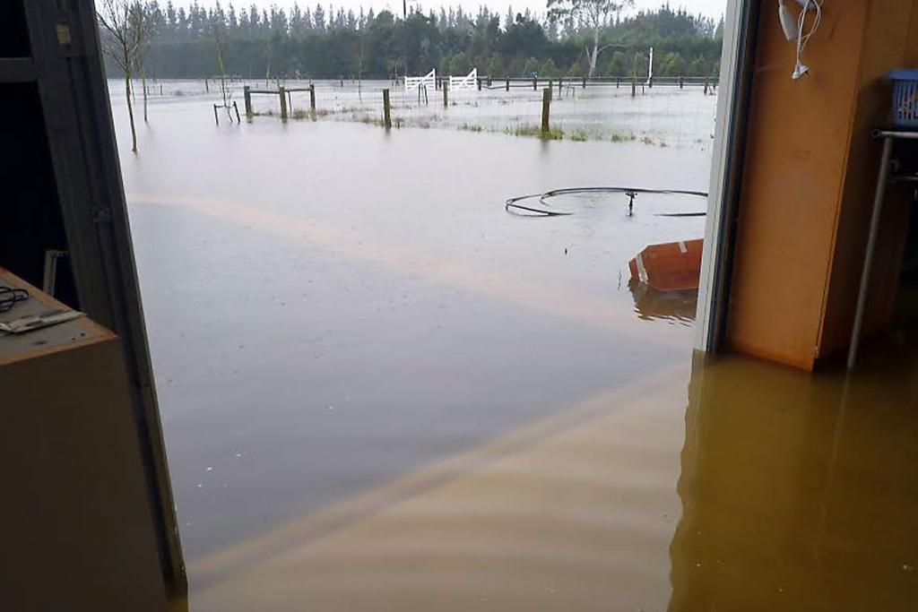 SODDEN: Claire Turner's flooded-out barn at her Dawsons Rd, Manderville, home.