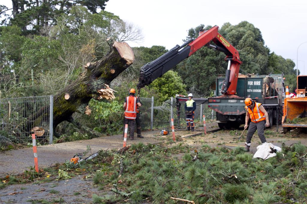 Workers clean up on Auckland's Great North Road.