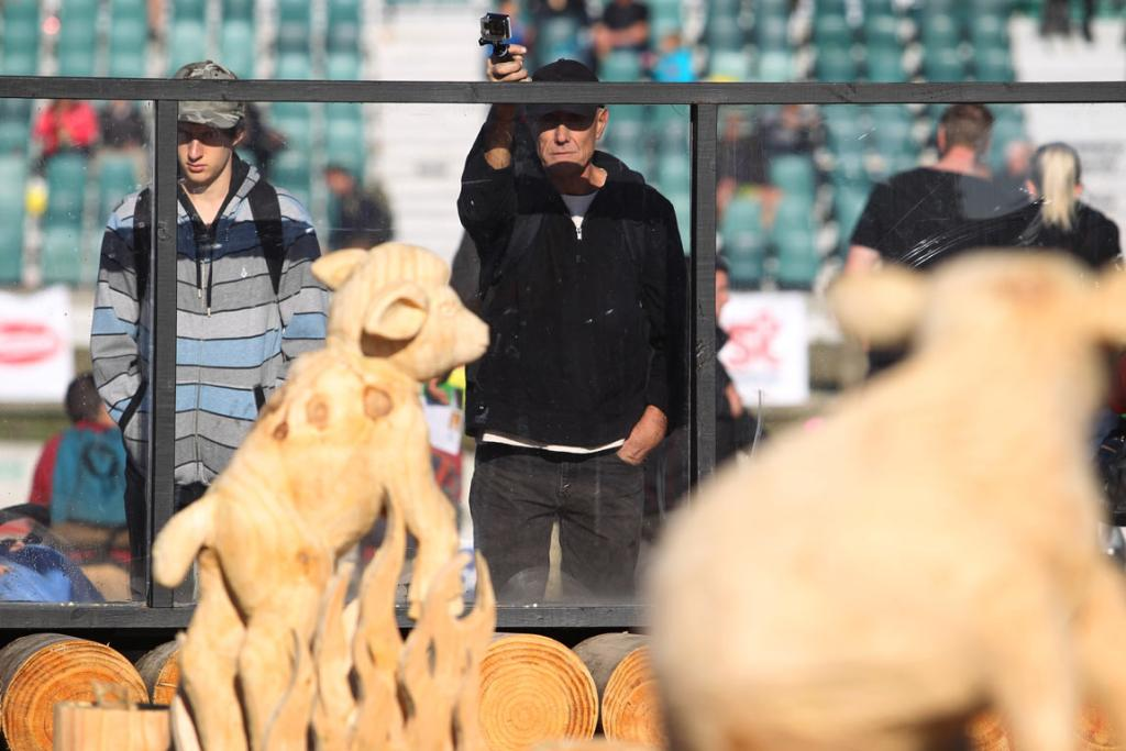 Spectators check out the chainsaw carving competition at 2014 National Fieldays.
