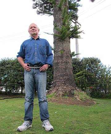 LOFTY PROBLEM: Otahuhu resident Paul Walker is getting more concerned about the safety risks posed by the falling branches of a council-protected Norfolk Island pine tree, which he's been trying to get consent to remove for the past decade.