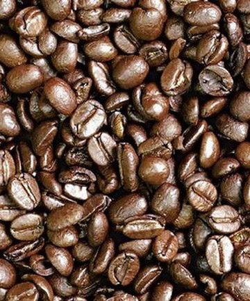 Coffee could soon fuel cars.