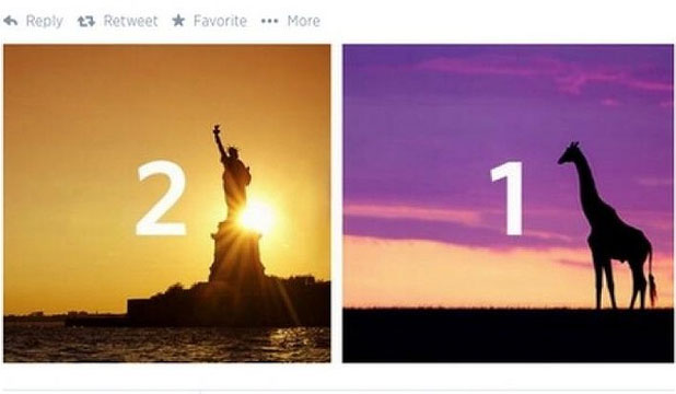 NICE TRY: Delta Airlines' patriotic tweet backfired when it was pointed out giraffes don't live in Ghana.