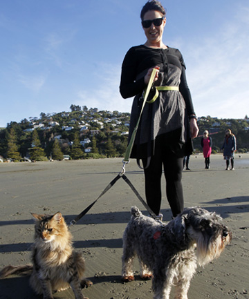 CAT WALK: Barry the cat strolls along Sumner beach quite happily with owner Aurora Christensen and dog, Elmo.