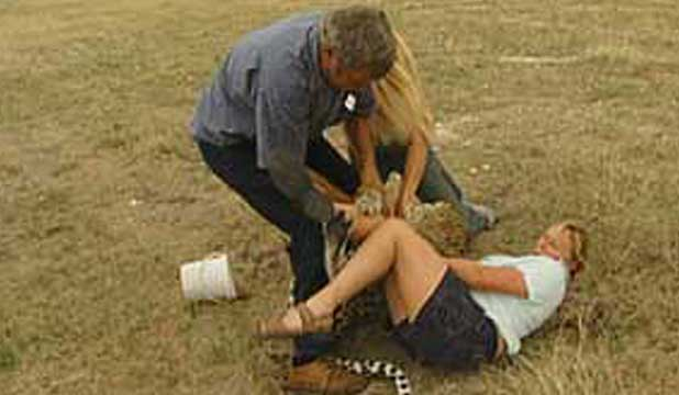UNDER ATTACK: This picture shows the moment a leopard attacked Dunedin women Judith Curran in Namibia in 2004.