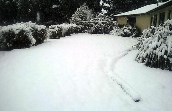 Snow in Mossburn
