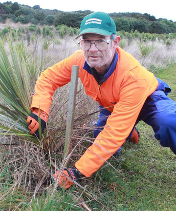 FULL STEAM AHEAD: Otatara Landcare Group  chairman Barry Smith with some of the planting completed during the 10,000 hours of volunteer work at Bushy Point Reserve.