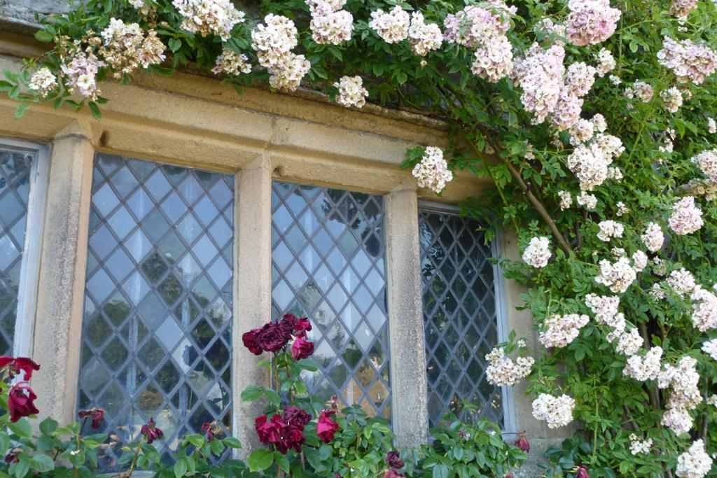 Roses frame a diamond-paned window in one of the oldest parts of Haddon Hall.