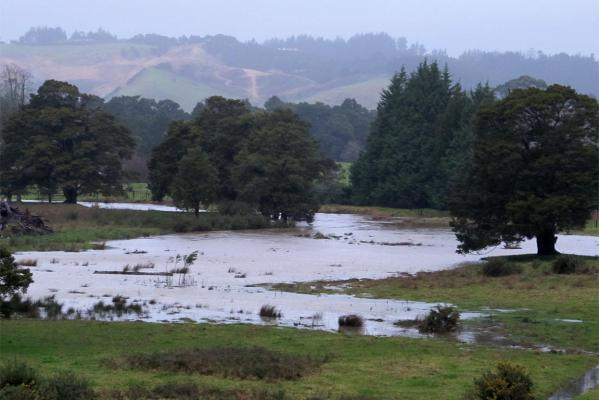 Flooding to the east of Vinegar Hill Rd in north Whangarei.