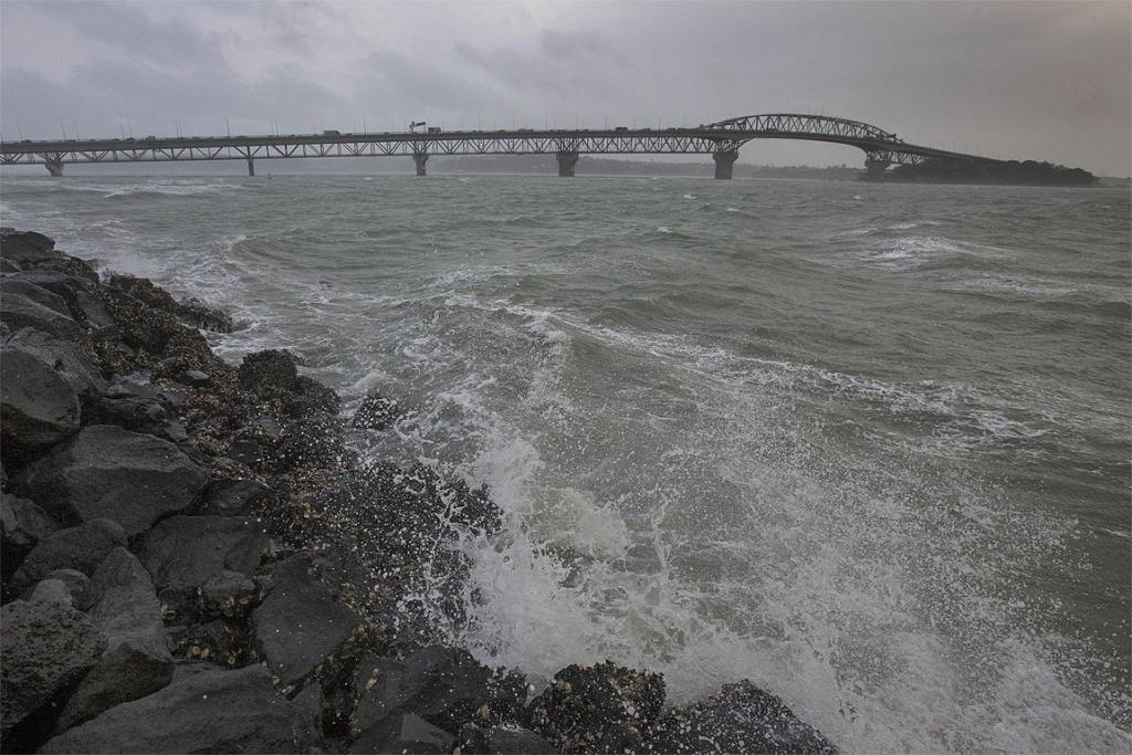 Wind whips around the Westhaven foreshore with the Auckland Harbour Bridge in the background.