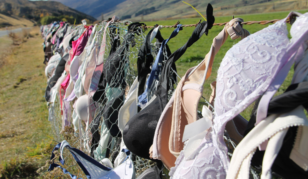 4ee42b8e74 COLOURFUL  The Cardrona Valley bra fence earlier this year.
