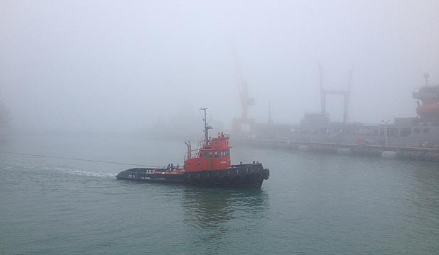 PEA SOUPER: Fog hangs over Auckland's harbour.
