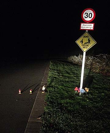 SAFETY FIRST: Residents also made a sign for the gnomes so they could cross the road safely in their new home.