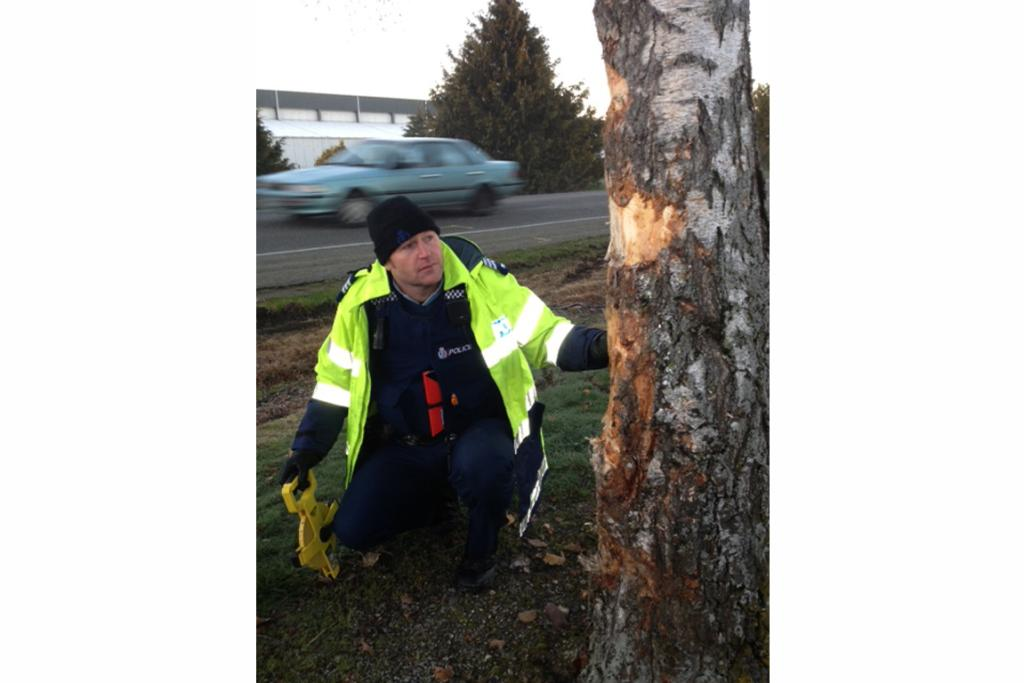 DAMAGE: Sergeant Clint Wright, of Gore, beside a tree which a car slammed into before splitting in two north of Mataura in Southland.