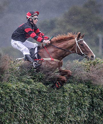 HIBALLING: Rangatira and Cory Perrett fly a fence on their way to a spectacular all-the-way win in yesterday's Wellington Steeplechase at Trentham.