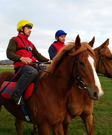 WIRED FOR ACTION: Chad Ormsby aboard promising filly, Divissima, prepares for a jumpout at the Matamata track with the GoPro chest brace ready to record the action for her syndicate of owners.