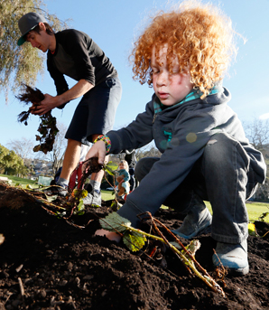 GREEN FINGERS: Jack Cowell, right and Alex Crisp plant strawberry plants in Pioneers Park in Washington Valley as part of the Victory Community Centre's Extending The Hub programme.