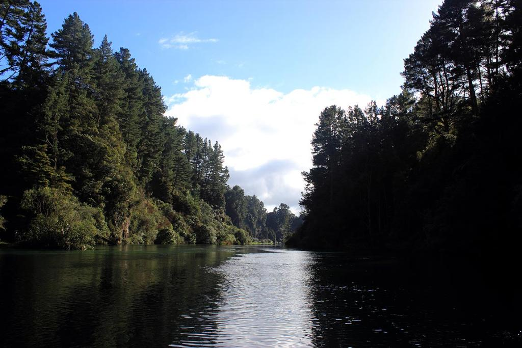 Travelling down the Waikato River toward The Squeeze.