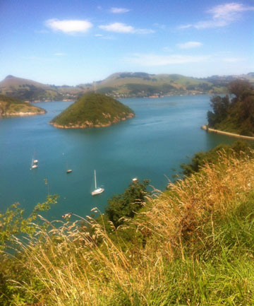 Port Chalmers-totally charming!