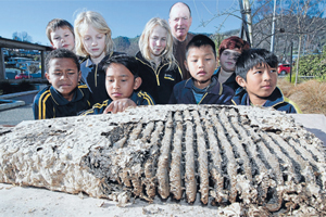 LEARNING NEST: Stirling Cathman aka Mr Science and Victory Primary School pupils with the wasps' nest that was gifted to the school.