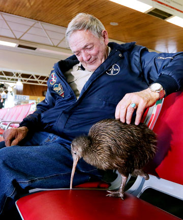 STRANDED SPARKY: Robert Webb, of Whangarei Native Bird Recovery Centre, was about to board the Auckland-bound flight with his one-legged Kiwi Sparky.