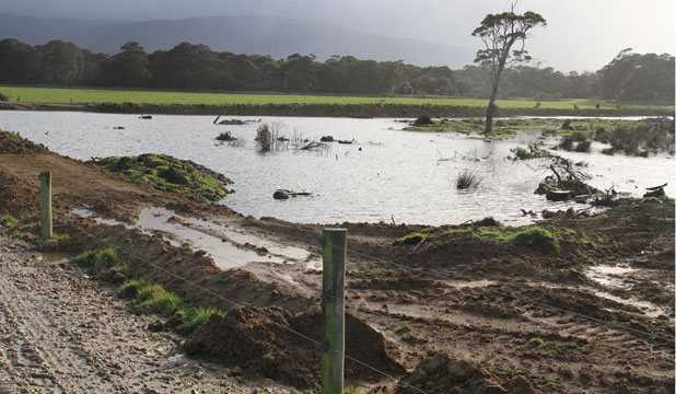 The newly established wetland on David Diprose's Pourakino Valley property will soon be planted out with native trees.