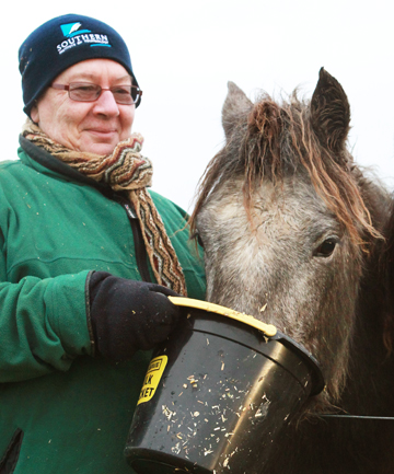 TOP HONOUR: Sheila Ramsay, feeding Connemara pony Pipit at Makarewa, has been selected as a judge for the annual Connemara Pony Show in Ireland.