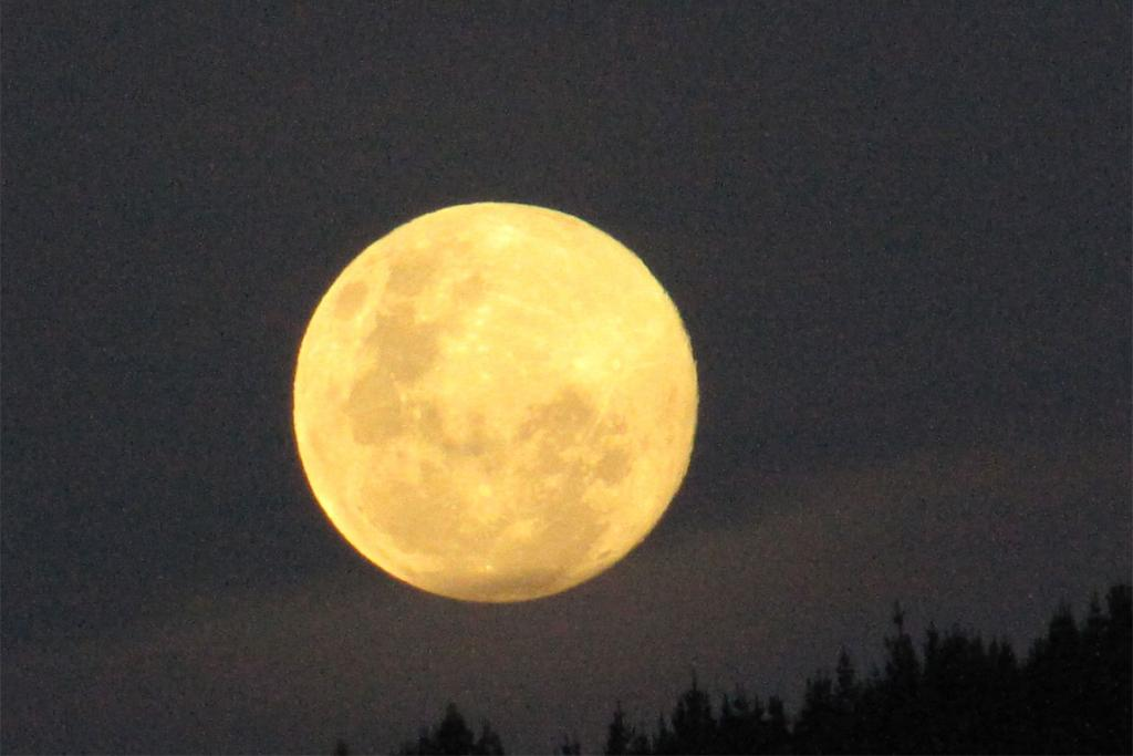 The August Supermoon rises over the Barnicoat range in Nelson.