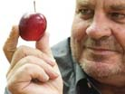 Kiwi-grown Rockit apples are taking on the snack food market.