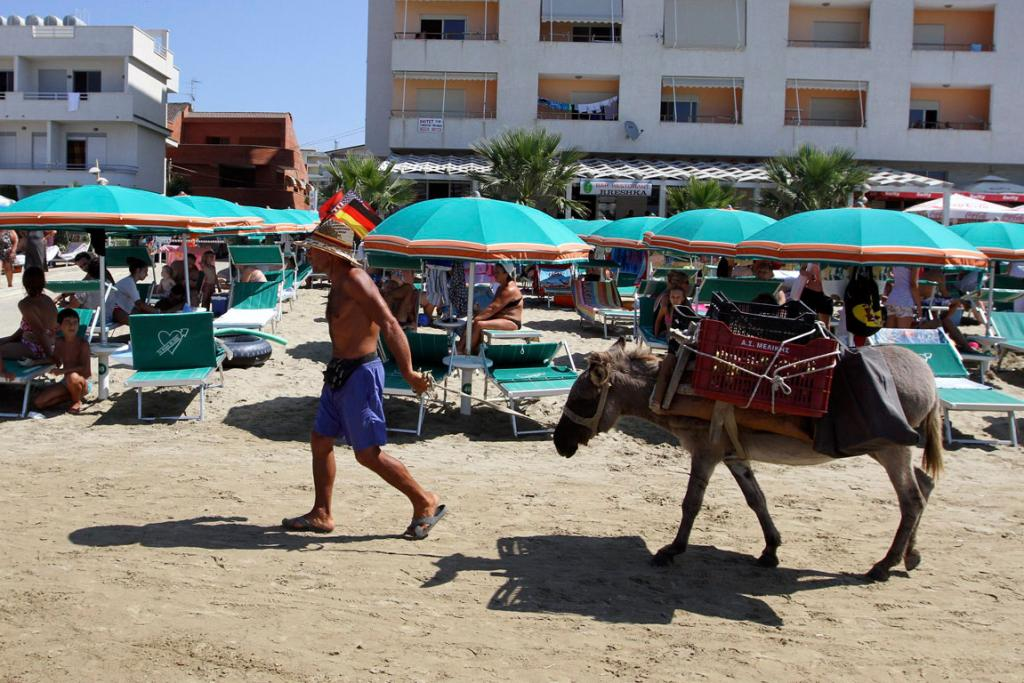 A man sells figs loaded on a donkey at a beach in the city of Durres. Albania has been gripped by hot weather with temperatures reaching 38 degrees Celsius.