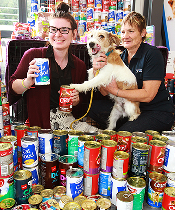 CAN-NINES COLLECTION: Invercargill City Library library assistant Eve Moodie, left, Southland SPCA animal manager Mary Bradley and Buster the dog check out more than 400 cans and packets of pet food library users traded for library fines.