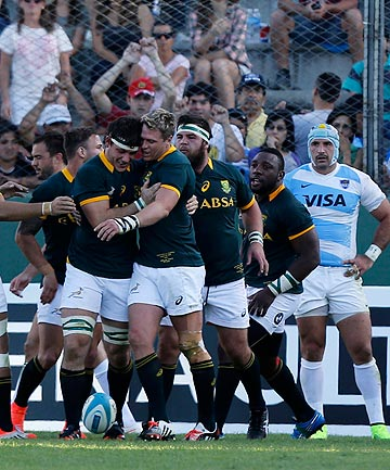 CRUCIAL: South Africa celebrate after scoring a decisive late try in their narrow Rugby Championship win over Argentina this morning.