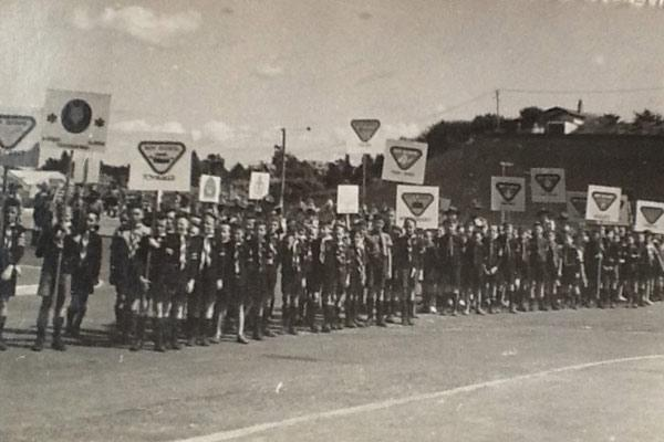 Badge of honour: The Hamilton cubs lined up on Caro St, Hamilton, with placards displaying the badges they had qualified for, during a presentation at a Victory War Bond Parade in Victoria St, around 1942 or 1943. Each side of the street behind the parade was dug up for trenches in the event of air raids.