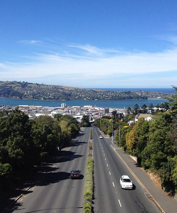HARBOUR VIEWS: From the top of the Roslyn over bridge the view of Dunedin is pretty fantastic!