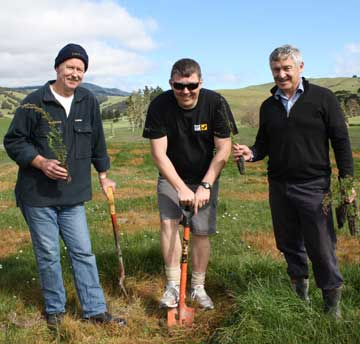 GETTING IT RIGHT: Landcorp employees Paul Taylor, Steve Neads and Phil McKenzie plant a new cultivar of manuka in experimental trials on Landcorp's Hill View farm in the Wairarapa.